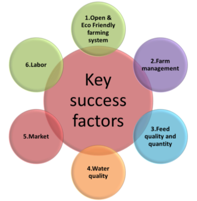 whole foods key success factors Whole foods: market analysis this was a key factor in their success, it outlines whole foods most basic mission and decline of organic farming are all factors.